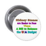 USA Budget 2011 Button