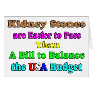 USA Budget 2011 Card