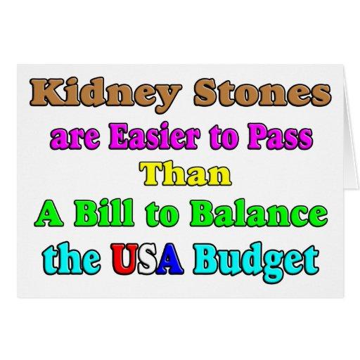 USA Budget 2011 Greeting Card