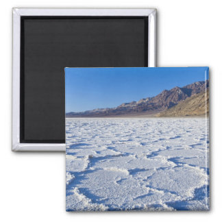 USA, CA, Death Valley NP, Salt Formations at 2 Inch Square Magnet