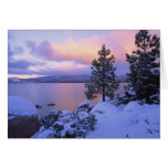 USA, California. A winter day at Lake Tahoe. Greeting Cards