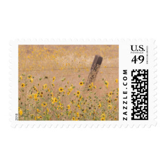 USA, California, Adin. Barbed-Wire Fence Postage