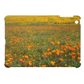 USA, California, Antelope Valley California Case For The iPad Mini