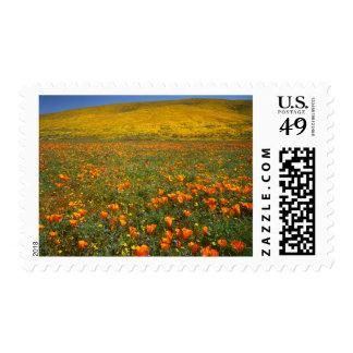USA, California, Antelope Valley California Postage