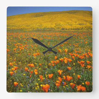 USA, California, Antelope Valley California Square Wall Clock