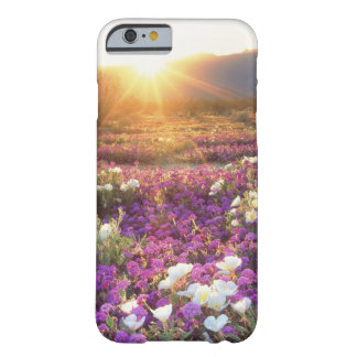 USA, California, Anza-Borrego Desert State Park. 2 Barely There iPhone 6 Case