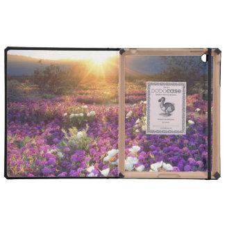 USA, California, Anza-Borrego Desert State Park. 2 iPad Folio Cases