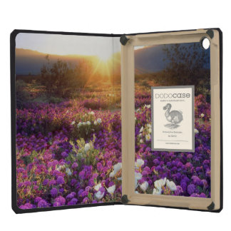 USA, California, Anza-Borrego Desert State Park. 2 iPad Mini Cases