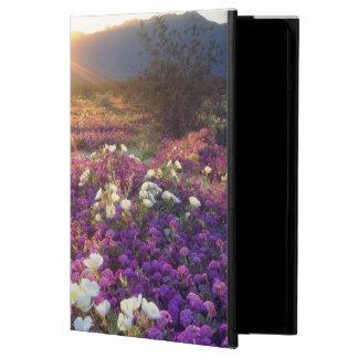 USA, California, Anza-Borrego Desert State Park. 2 iPad Air Case