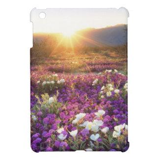 USA, California, Anza-Borrego Desert State Park. 2 iPad Mini Covers