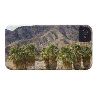 USA, California, Anza-Borrego Desert State Park. iPhone 4 Cover
