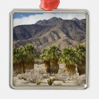 USA, California, Anza-Borrego Desert State Park. Metal Ornament
