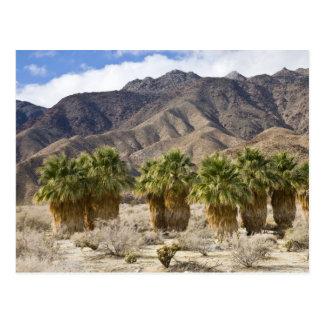 USA, California, Anza-Borrego Desert State Park. Postcard