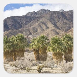 USA, California, Anza-Borrego Desert State Park. Square Sticker