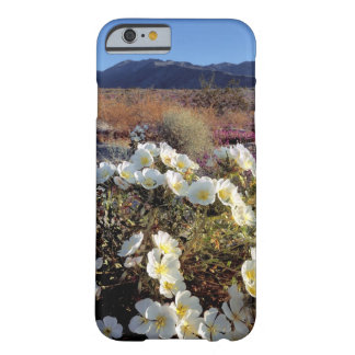 USA, California, Anza-Borrego DSP. Dune evening 2 Barely There iPhone 6 Case