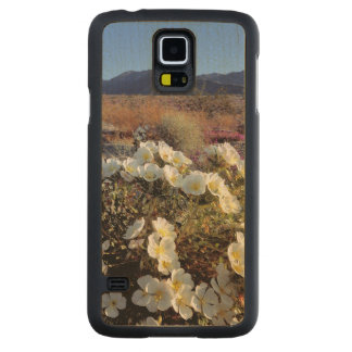 USA, California, Anza-Borrego DSP. Dune evening 2 Carved Maple Galaxy S5 Case