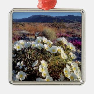 USA, California, Anza-Borrego DSP. Dune evening 2 Metal Ornament