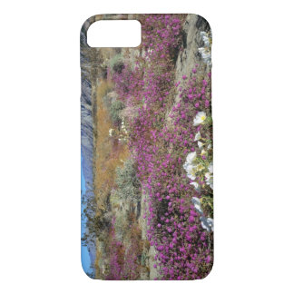 USA, California, Anza-Borrego DSP. Dune evening iPhone 8/7 Case