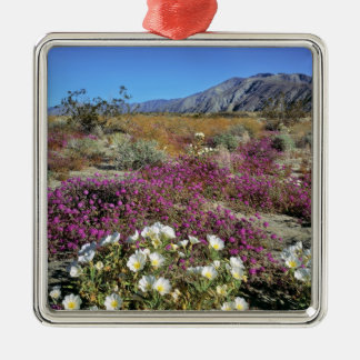 USA, California, Anza-Borrego DSP. Dune evening Metal Ornament