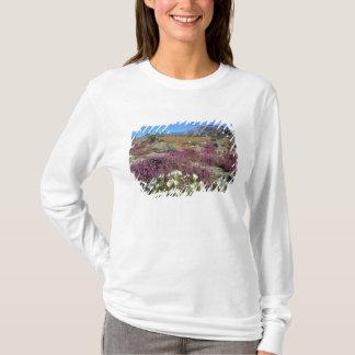 USA, California, Anza-Borrego DSP. Dune evening T-Shirt