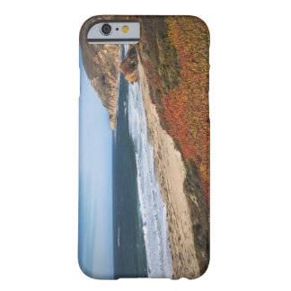 USA, California, Big Sur, Red plants by beach Barely There iPhone 6 Case