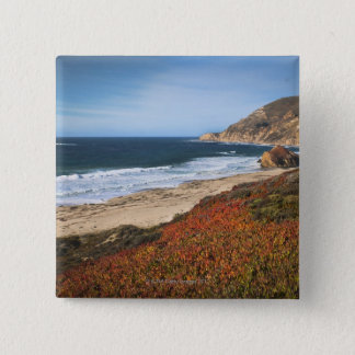 USA, California, Big Sur, Red plants by beach Button