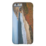 USA, California, Big Sur, Red plants by beach iPhone 6 Case
