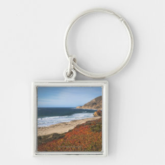 USA, California, Big Sur, Red plants by beach Keychains