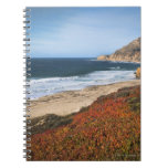 USA, California, Big Sur, Red plants by beach Note Books
