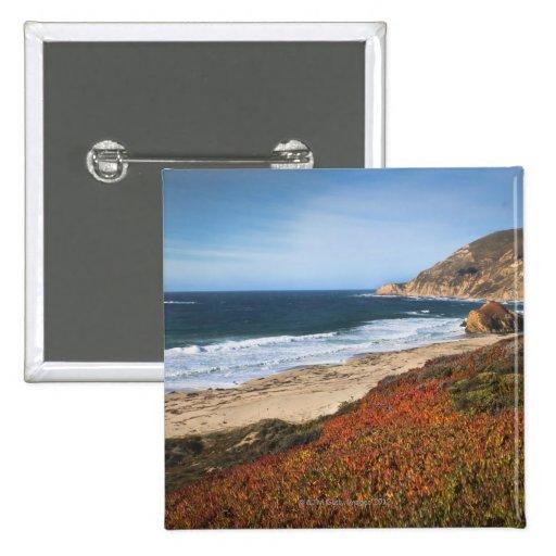 USA, California, Big Sur, Red plants by beach Pins