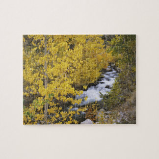 USA, California. Bishop Creek and aspen trees in Jigsaw Puzzle