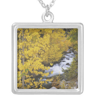 USA, California. Bishop Creek and aspen trees in Silver Plated Necklace