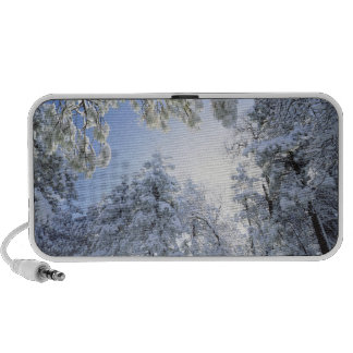 USA, California, Cleveland National Forest, iPod Speakers