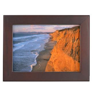 USA, California, Cliffs At Pescadero State Beach Memory Box