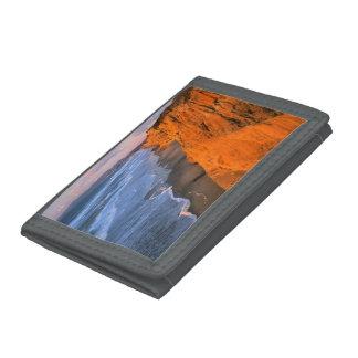 USA, California, Cliffs At Pescadero State Beach Tri-fold Wallet