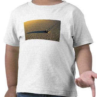 USA, California, Death Valley National Park. 2 Tee Shirts