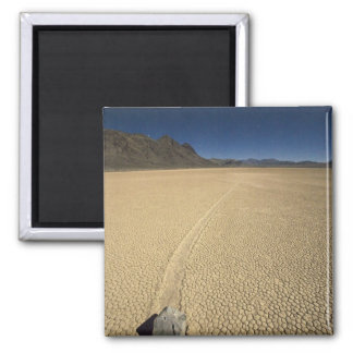 USA California Death Valley National Park 3 Refrigerator Magnet