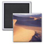 USA, California, Death Valley, sand dunes, dawn 2 Inch Square Magnet