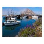 USA, California. Docked Boats At Morro Bay Postcard