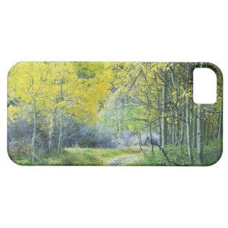 USA, California, Eastern Sierra Mountains. iPhone SE/5/5s Case