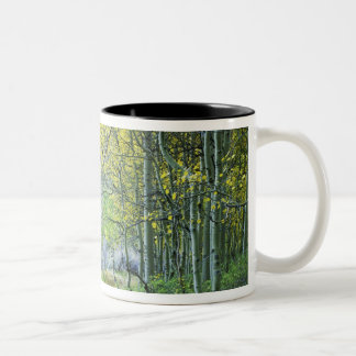 USA, California, Eastern Sierra Mountains. Two-Tone Coffee Mug