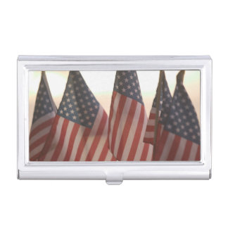 USA, California, Gold Country, Amador City: Business Card Holder