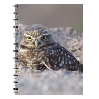 USA - California - Imperial County - Salton Sea Spiral Notebook