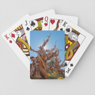 USA, California, Inyo National Forest 10 Playing Cards
