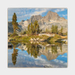 Inyo National Forest Maple Wood Coaster