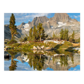USA, California, Inyo National Forest 13 Postcard