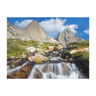 USA, California, Inyo National Forest 14 Canvas Print