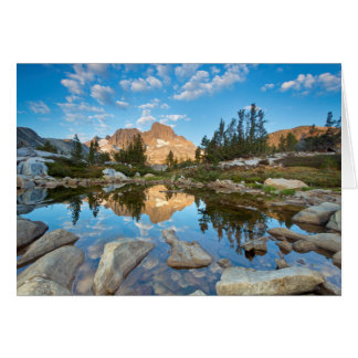 USA, California, Inyo National Forest. 2 Card