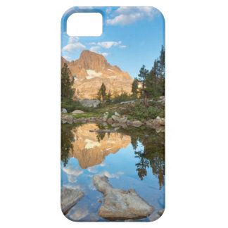 USA, California, Inyo National Forest. 2 iPhone SE/5/5s Case