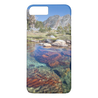 USA, California, Inyo National Forest 4 iPhone 8 Plus/7 Plus Case